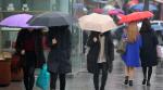 13일 중부지방에 많은 비…서울 아침 최저 9도
