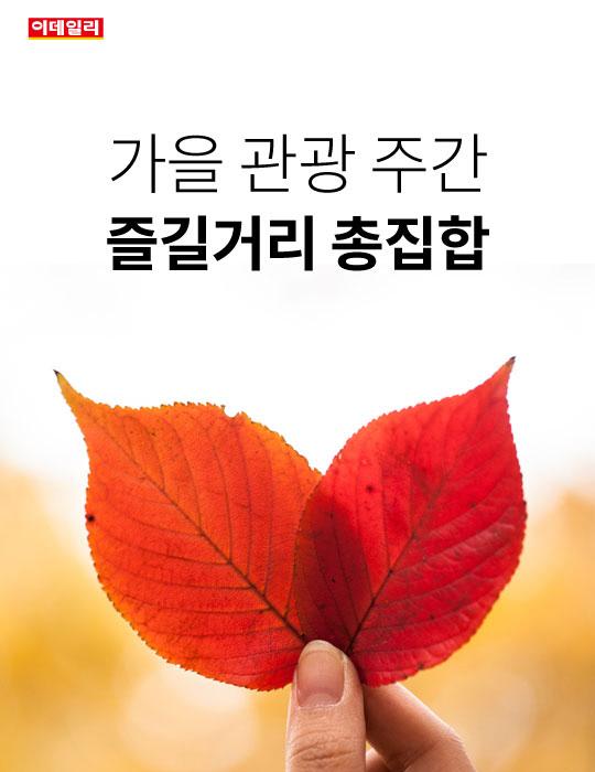 가을 관광 주간, 즐길거리 총집합