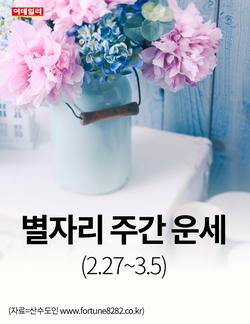 [카드뉴스] 별자리 주간 운세