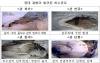 '싱크홀' 발생 우려되는 노후 하수관로 1500㎞ 정비