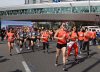 [포토] 광안대교 달리는 2017 아디다스 마이런 부산 마라톤 대회