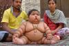 `생후 8개월이 17kg?`…멈추지 않는 식욕의 슈퍼 베이비