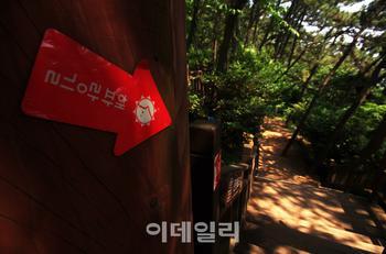 [숲길을 걸어요③] 해풍 맞..