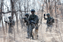 軍 복무기간·병력 축소…`대체복무제` 어쩌나
