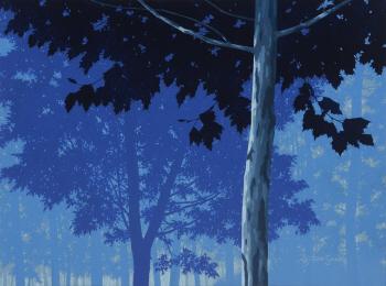[e갤러리] 그 나무숲엔 빛과..