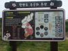 서울 종로와 대전 대덕 등 전국 17곳에 무궁화동산 조성된다