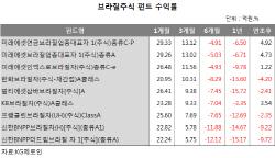 글로벌 변동성 장세에도..브라질펀드, 나홀로 '반짝'
