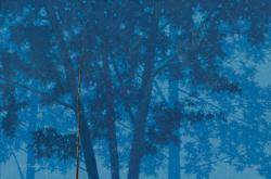 [e갤러리] 푸른몽환 가른 한 가닥 현실…주태석 '자연-이미지'