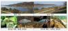 금강 3개보 완전 개방 뒤 유속 증가…녹조·생태계 개선