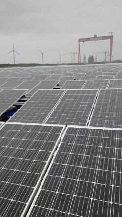 [노다지 신재생]유수지에 태양광패널 5만개 설치…산림훼손 피하고 발전효율도 높아