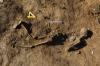 화살머리고지 지뢰제거, 전사자 유해 5구 추가 발견…현재까지 총 9구