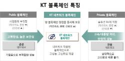 라인, 카카오와 다른 KT 블록체인 전략...네트워크 블록체인 실체는
