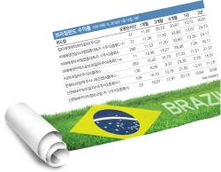 브라질펀드 6개월 수익률 28%…'삼바축제' 지금 뛰어들면 늦나