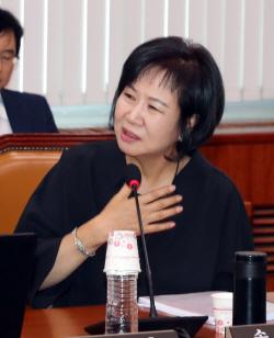 """손혜원 """"검찰 수사 요청할 것…SBS·중흥건설 포함해야"""""""