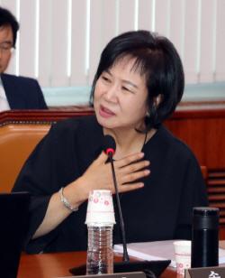 """손혜원 """"이렇게 뜨거운 성원 처음... 목포행 취소→20일 기자회견"""""""