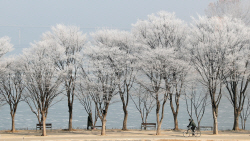 [포토]소양강 상고대, 여행가고 싶은 풍경