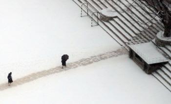 눈 내리는 서울
