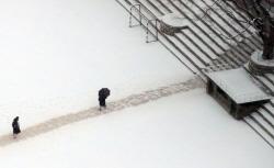 [포토]'눈 내린 교정'