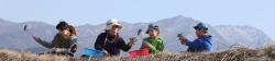 봄나물 캐는 지리산 아이들