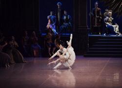 국립발레단, 올해는 클래식…'잠자는 숲속의 미녀' 공연