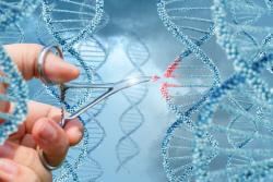 신의 영역 '유전자'에 '가위'를 들이대다