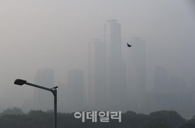 김연경 선수와 협업한 '월클 토종효모 곡물식빵'                                                                                                                           ...