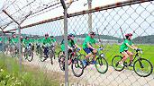 Peace Korea DMZ �������ȭ ������ ����