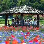`천연의 숲` 꽃양귀와 아이들