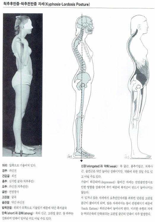 문상현 원장의 모터스포츠 메디컬 솔루션(2) - `균형 잡힌 몸이 최고의 성적을 낸다`