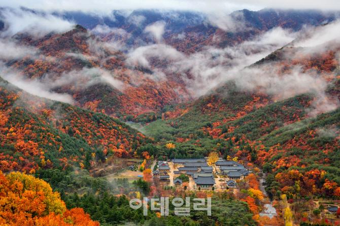 대한민국 최고의 관광사진…대통령상 `운조루의 봄`