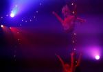 서커스 `압생트 쇼`