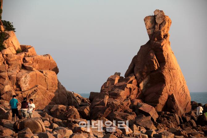 [여행] 해(日)와 해(海)가 썸타는 섬, 낭만가도 달리다