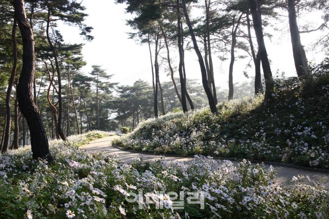 봄 여행주간 주요관광지 46곳 방문객 늘어