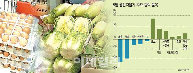정부 편법 가격인상과의 전쟁선포…치킨 이어 밥상물가 단속(종합)