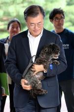 유기견 '토리' 청와대 입성