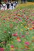[포토]'꽃처럼 아름다운'