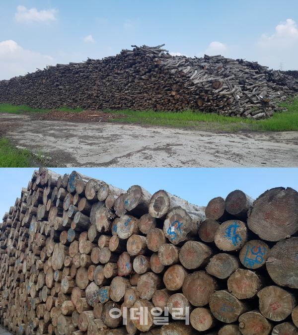 [르포]`단 하나도 버릴 게 없다` 나무의 변신…한솔홈데코 익산공장