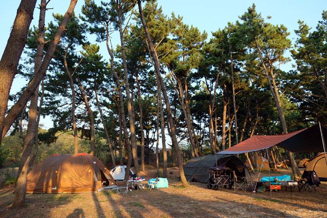[현장스케치] 지프와 함께 짜릿한 캠핑, '고 아웃 캠프 9'