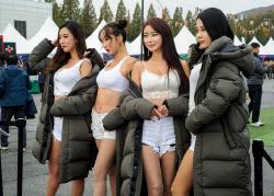 버커루, 슈퍼레이스 챔피언십 레이싱걸