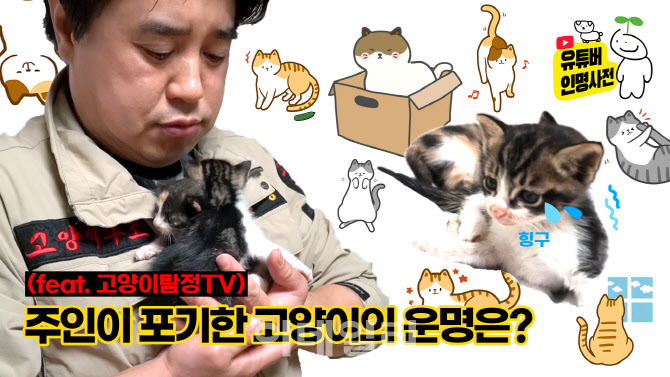 고양이 성별에 따라 찾는 법, 옥탐정에게 물어봐(ft. 고양이탐정TV)(영상)