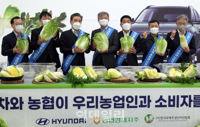 [포토] 무·배추 소비촉진 나선 현대자동차-농협