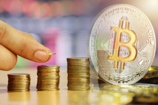 비트코인 국내 가격 4200만원대, 이더리움 2% 하락
