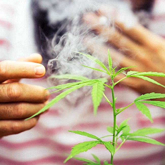 외국 가서 대마초 흡연, 한국에서 '처벌 가능'?