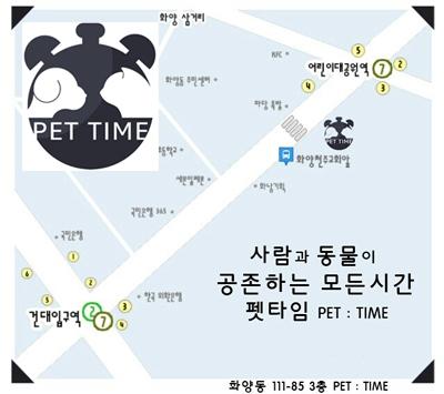 건강한 강아지분양은 애견분양전문업체 펫타임에서!