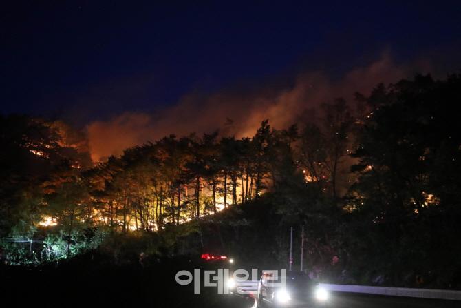 산림청, 본격적인 산불방지체제 돌입…'가을철 산불조심기간'