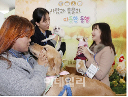 """""""동물매개치유 대신 '동물교감치유'로 불러주세요"""""""