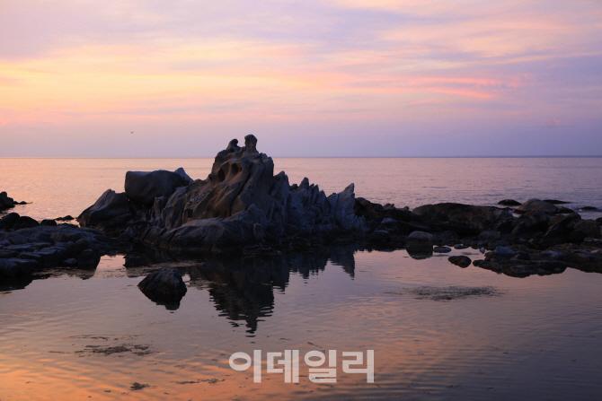 바다향 품은 커피, 소원 품은 바위…오감만족 '강릉'