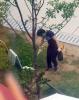 경찰, '경의선 숲길 고양이' 사체 유기 피의자 조사중