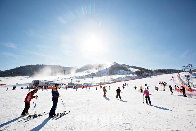 알펜시아리조트, 스키 시즌권 판매