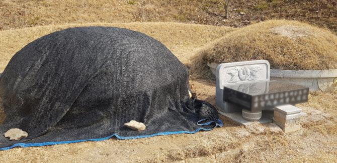 신천지 우한교회 '감염원' 가능성…정부 지회 운영 조사